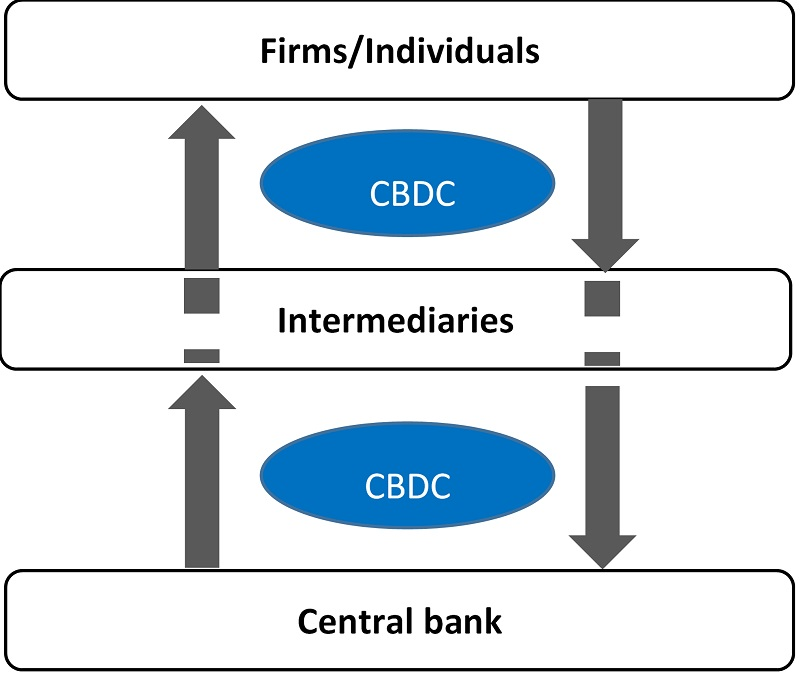 A diagram showing an indirect issuance model where CBDC is issued by a central bank to firms and individuals through intermediaries.