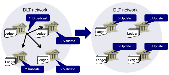 Image of DLT recording process. The details are shown in the main text.